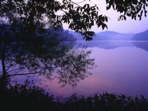 dawn_over_radnor_lake